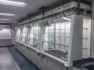 Green Solutions Fume Hood