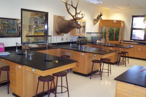 wooden lab casework & furniture