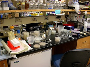laboratory countertops