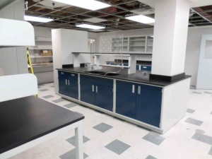Modular Steel Laboratory Furniture cabinets and sink