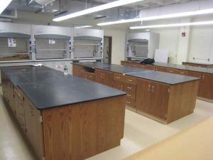 Lab wood case work