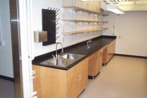 Wood Casework for Labs